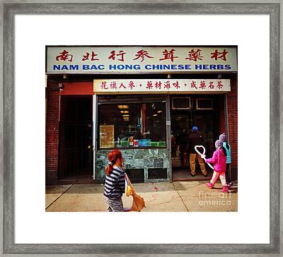 Nam Bac Hong Chinese Herbs, Chinatown, Boston, Massachusetts Framed Print