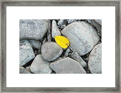 Nameless Framed Print by Josh Baldo
