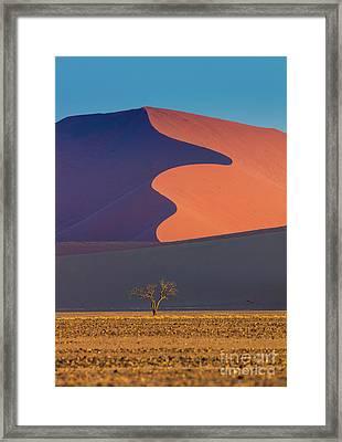 Namib Dune Framed Print by Inge Johnsson