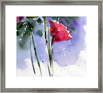 Nancy Jane's Rose Framed Print by Anne Duke