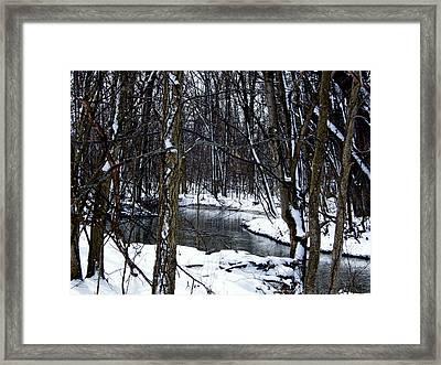 Nancy's Creek Framed Print by Martin Morehead