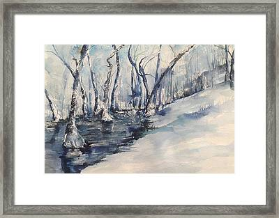 Nancy's Creek Winter Of 2012 Framed Print by Robin Miller-Bookhout