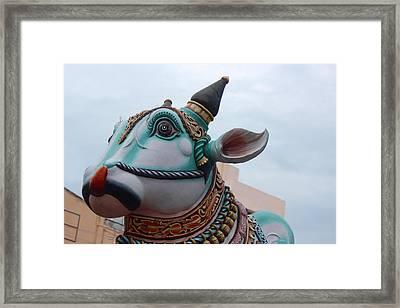 Nandi, Madurai Framed Print by Jennifer Mazzucco