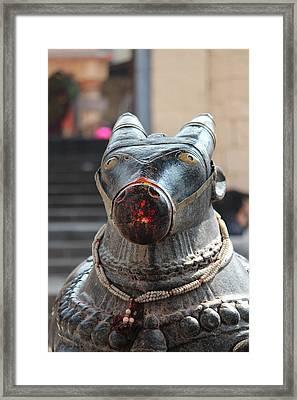 Nandi, Near Satara Framed Print by Jennifer Mazzucco