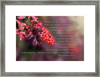 Nandina Berries Phil.4 V 8-9 Framed Print by Linda Phelps
