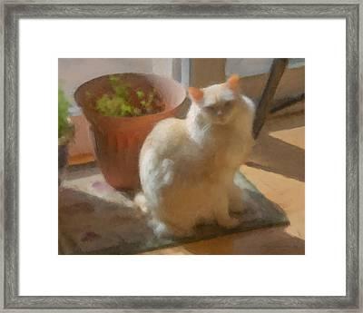 Naomi Waiting For Spring Framed Print