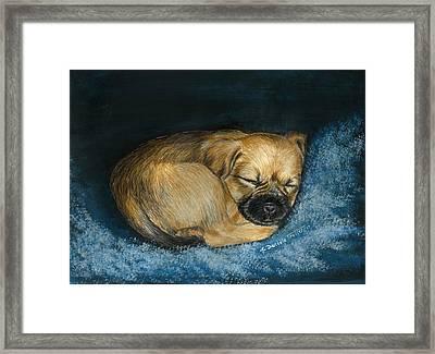Nap Puppy Framed Print