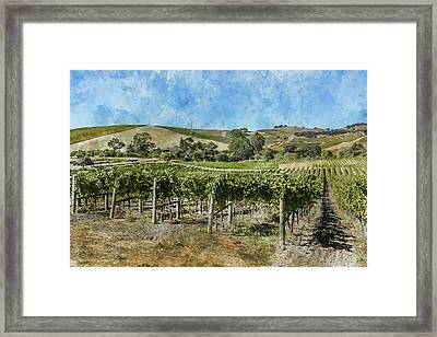 Napa Valley California Framed Print by Brandon Bourdages