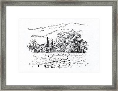Napa Valley Framed Print by Masha Batkova
