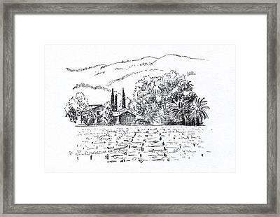 Napa Valley Framed Print by Masha Batkova