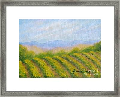 Napa Valley Vineyard Framed Print by Jerome Stumphauzer