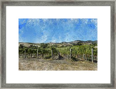 Napa Valley Vineyard Landscape Framed Print by Brandon Bourdages