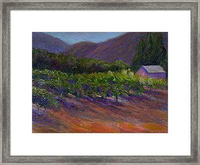 Napa Vineyard Framed Print by Bonnie Hanly