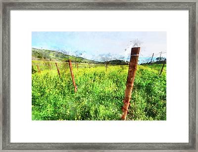 Napa Vineyard In The Spring Framed Print by Brandon Bourdages