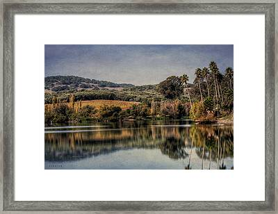 Napa Winery Lake Framed Print by Catherine Pearson