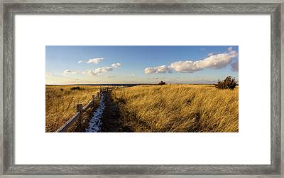 Framed Print featuring the photograph Napatree Dunes by Kirkodd Photography Of New England
