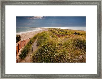 Napatree Point Preserve Framed Print