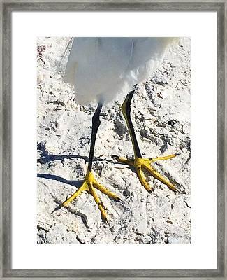 Naples 1 Framed Print
