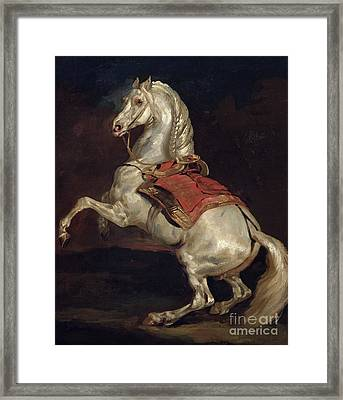 Napoleon's Stallion Tamerlan Framed Print by Theodore Gericault