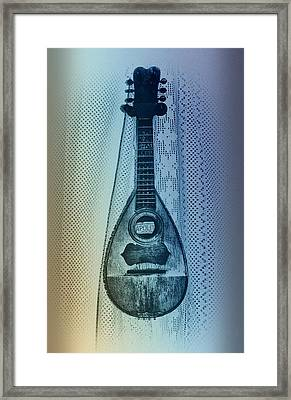 Napolitan Mandolin Framed Print by Bill Cannon