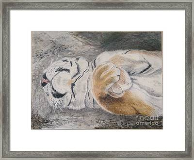Napping Framed Print