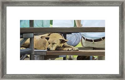 Naptime In The Bleachers Framed Print by Linda Tenukas