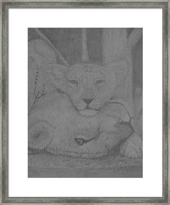 Naptime Framed Print by Jose Cabral