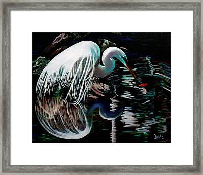 Narcissis Framed Print by Susan Duda