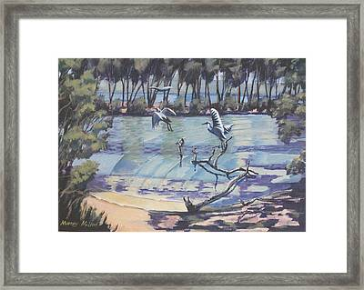 Narrabeen Lakes 2 Framed Print by Murray McLeod