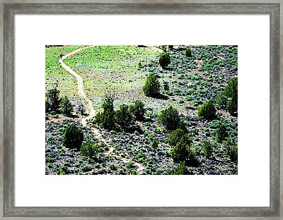 Narrow Is The Path Framed Print