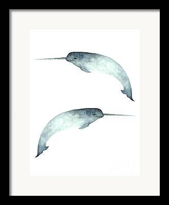 Narwhal Framed Prints