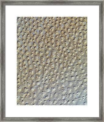 Nasa Image- Star Dunes, Algeria-2 Framed Print