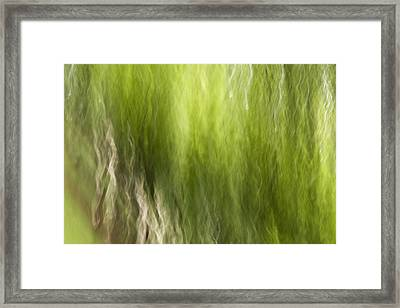 Nash Square Framed Print