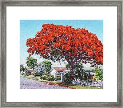Nassau East Blvd.  Framed Print