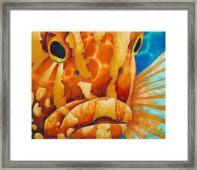 Nassau Grouper  Framed Print by Daniel Jean-Baptiste