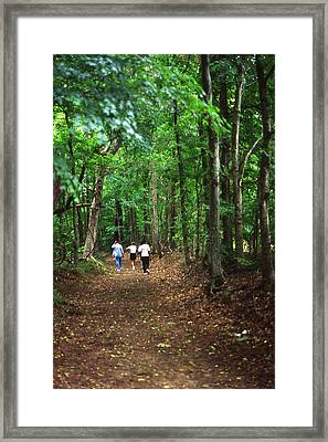 Natchez Trace Walkers Framed Print by Randy Muir