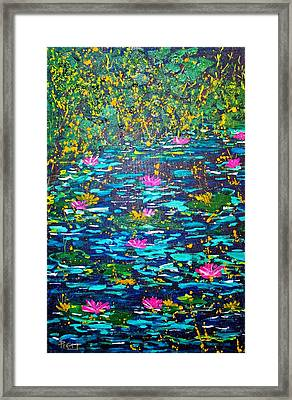 National Flowers Framed Print by Piety Dsilva
