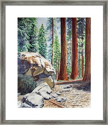 National Park Sequoia Framed Print