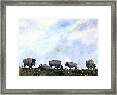 National Treasure - Bison Framed Print
