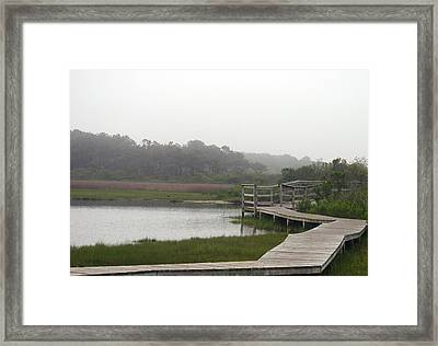 National Walkway Framed Print by Kelvin Booker