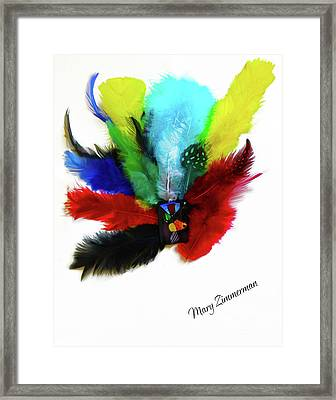 Native American Tribal Feathers Framed Print