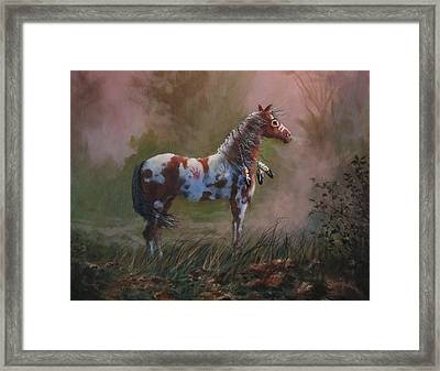 Native American War Pony Framed Print by Tom Shropshire