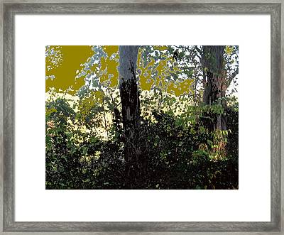 Natura 2 Framed Print by Therese AbouNader