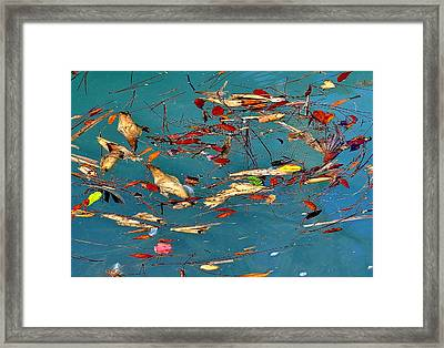 Natural 2 17 Framed Print