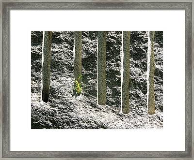 Natural And Unnatural Accents Framed Print