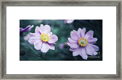 Framed Print featuring the photograph Natural Beauty by Hannes Cmarits