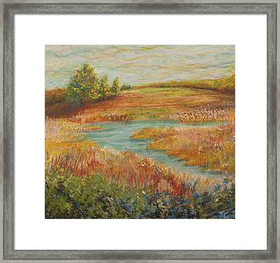 Natural Beauty Framed Print by John Carman