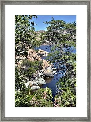 Natural Beauty  Framed Print by Thomas Todd