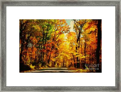Natural Cathedral Framed Print by Lois Bryan