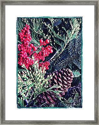 Natural Christmas 3 Card 1 Framed Print by Sarah Loft